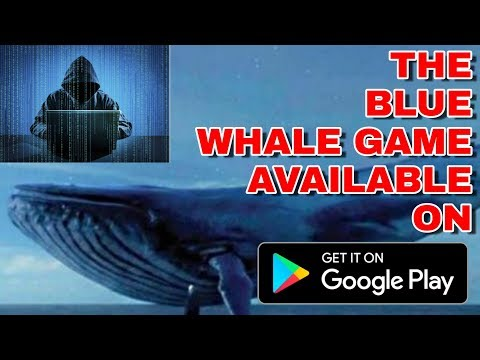 Blue Whale : Shark Hunger Sim 2018 APK Download (Android