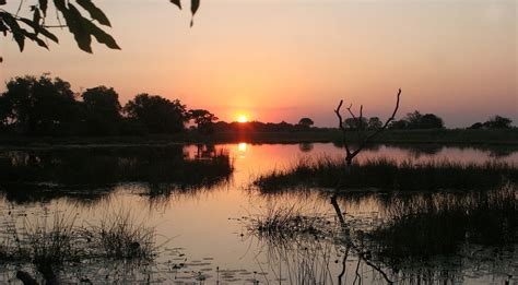 Okavango Delta Fly in Safari, planned and booked by