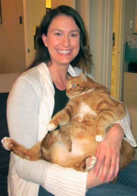 42-pound Texas fat cat Skinny earning nickname by dropping